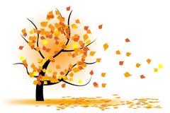 Albero di autunno in vento Fotografia Stock