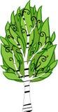 Albero di betulla del fumetto Isolato Immagini Stock Libere da Diritti