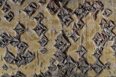 albero di corteccia della 11 tremula Fotografia Stock Libera da Diritti