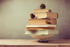 Albero di festa di Natale fatto dai libri Albero di Natale alternativo Fotografia Stock Libera da Diritti