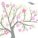 Albero di fioritura con un uccello Fotografia Stock
