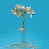 Albero di fortuna nella crescita dell'acqua Fotografie Stock
