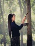 Albero di gomma e donne bella Tailandia Fotografia Stock Libera da Diritti