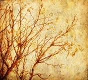 Albero di Grunge Fotografie Stock