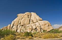 Albero di Joshua con le rocce in Joshua Fotografia Stock Libera da Diritti