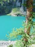 Albero di larice e lago della montagna Immagine Stock