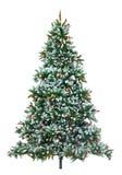 Albero di Natale. Fotografia Stock