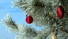 Albero di Natale. Immagine Stock