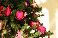 Albero di Natale 1 Immagini Stock Libere da Diritti