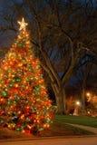 Albero di Natale alla notte Fotografie Stock Libere da Diritti