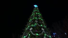 Albero di Natale alla notte decorato con le luci stock footage