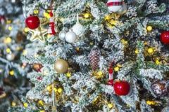 Albero di Natale con gelo bianco sui perni Fotografie Stock Libere da Diritti