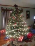 Albero di Natale con i presente sotto immagini stock libere da diritti
