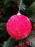 Albero di Natale con il giocattolo rosso Immagine Stock