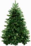 Albero di Natale con il percorso di residuo della potatura meccanica immagine stock