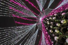 Albero di Natale decorato a Vilnius immagine stock