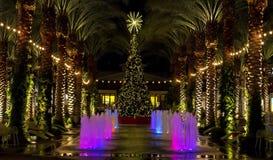 Albero di Natale del centro commerciale dell'Arizona e palme accese Immagine Stock