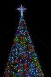 Albero di Natale del Virginia Beach Immagini Stock Libere da Diritti