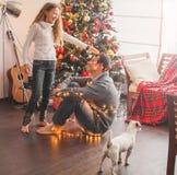 Albero di Natale della decorazione della famiglia immagine stock