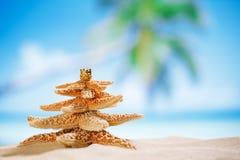 Albero di Natale delle stelle marine sulla spiaggia con il fondo di vista sul mare immagine stock