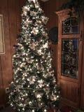Albero di Natale dentro la stanza del pannello Fotografia Stock Libera da Diritti