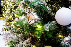 Albero di Natale di inverno Immagini Stock Libere da Diritti