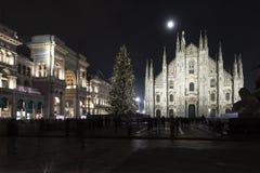 Albero di Natale in duomo Milano fotografia stock libera da diritti