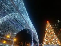 Albero di Natale e cento di luce bianca immagini stock