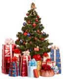 Albero di Natale e contenitore di regalo del gruppo. Fotografie Stock