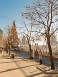 Albero di Natale e di luce solare sul quadrato rosso Fotografie Stock Libere da Diritti