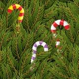 Albero di Natale e lecca-lecca della menta piperita di Natale Immagini Stock
