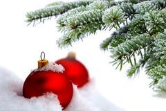 Albero di Natale e sfere rosse Immagine Stock