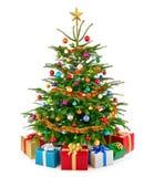 Albero di Natale fertile fresco con i contenitori di regalo variopinti fotografia stock