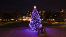 Albero di Natale di festa sui punti del capitale dello Stato dell'Idaho con gli edifici di Boise immagine stock