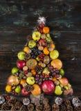Albero di Natale di frutta Fotografering för Bildbyråer