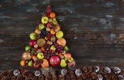 Albero di Natale di frutta Royaltyfri Foto