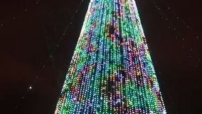Albero di Natale Individuato sulla via Profondità del campo poco profonda La fucilazione ha avuto luogo a tarda sera stock footage