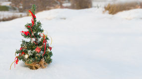 Albero di Natale innevato Fotografie Stock