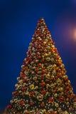 Albero di Natale, Londra, Inghilterra, Regno Unito fotografia stock libera da diritti