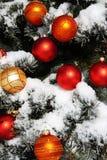 Albero di Natale naturale Fotografia Stock Libera da Diritti