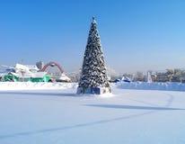 Albero di Natale nel parco Fotografie Stock