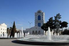 Albero di Natale nel parco, Ashgabad, capitale del Turkmenistan Fotografie Stock Libere da Diritti