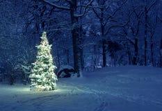 Albero di Natale in neve Fotografie Stock Libere da Diritti