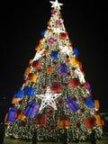 Albero di Natale reale Immagini Stock