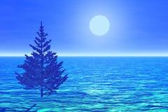 Albero di Natale solo in una luce della luna Fotografie Stock Libere da Diritti