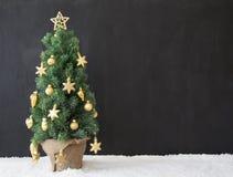 Albero di Natale, spazio della copia, calcestruzzo nero Fotografie Stock Libere da Diritti