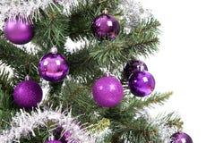 Albero di Natale in studio su priorità bassa bianca immagine stock libera da diritti