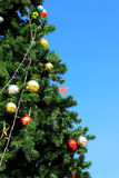Albero di Natale verde con la palla Fotografie Stock