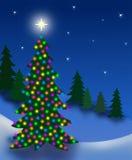 Albero di notte di Natale Fotografia Stock
