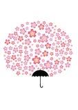 Albero di ombrello di Sakura Fotografie Stock